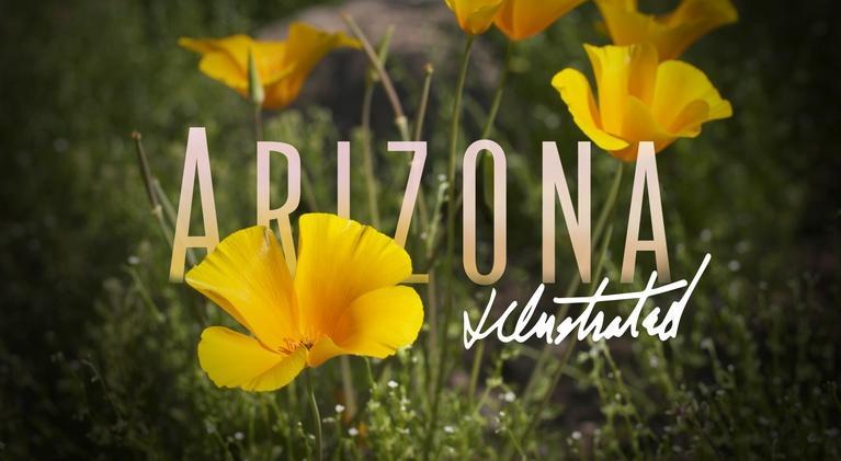 Arizona Illustrated: March 22, 2019