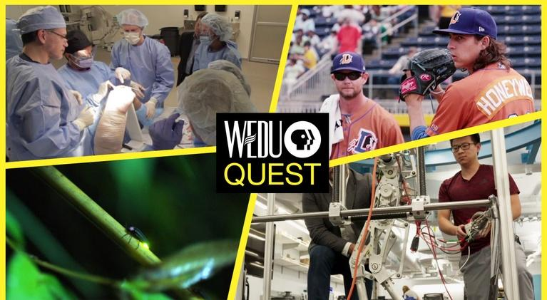 WEDU Quest: Episode 404