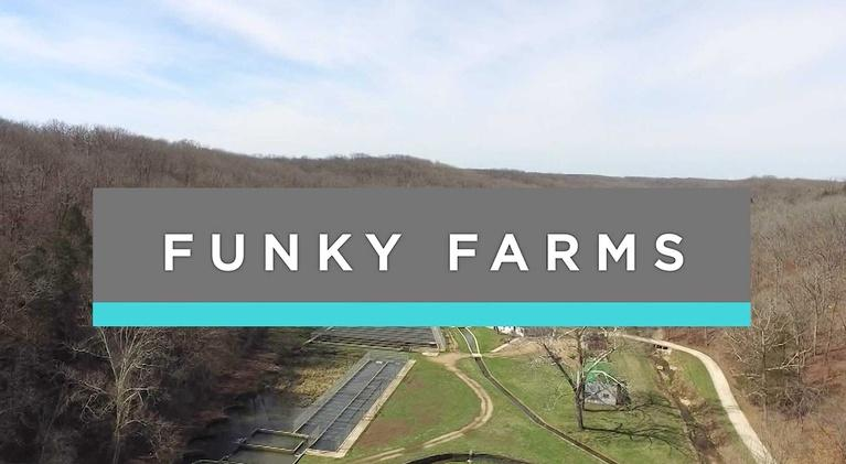 Feast TV: Best of Feast TV: Funky Farms