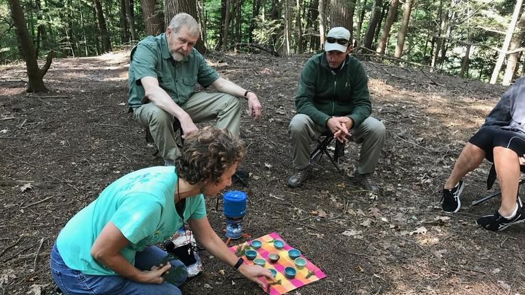 Windows to the Wild: Forest Bathing (Preview)