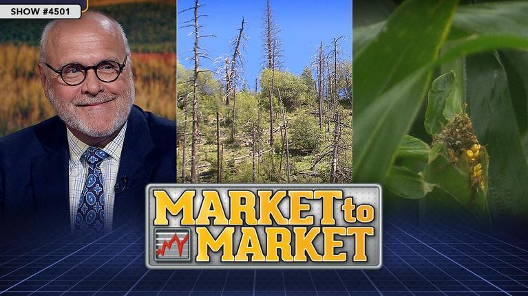 Market to Market: Market to Market (August 23, 2019)