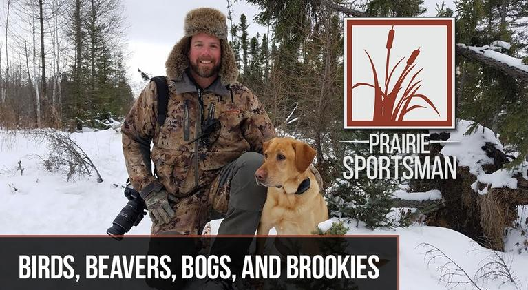 Prairie Sportsman: Birds, Bogs, Beavers and Brookies
