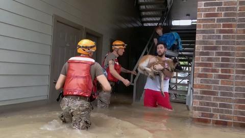 NOVA -- Did Climate Change Cause Hurricane Harvey?