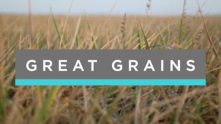 Feast TV: Great Grains