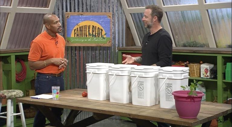 The Family Plot: Bees & Composting
