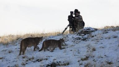 Behind the Scenes of Pumas: Legends of the Ice Mountains