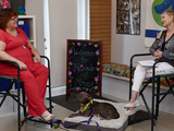 Up Close With Cathy Unruh, June 2020: Friends of Strays Animal Shelter