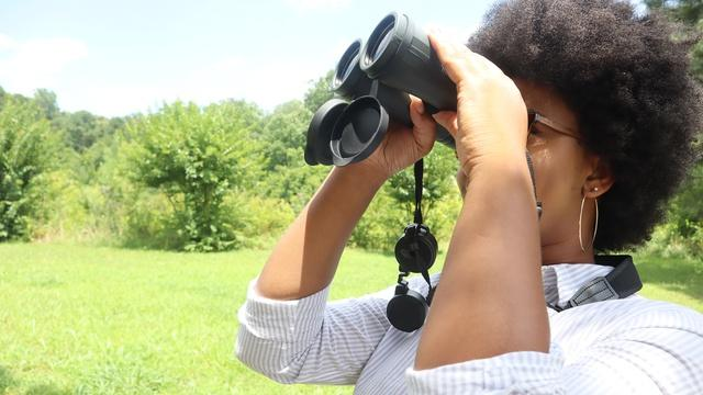 Birding Tips and Tricks | Birding 101 with Sheridan Alford
