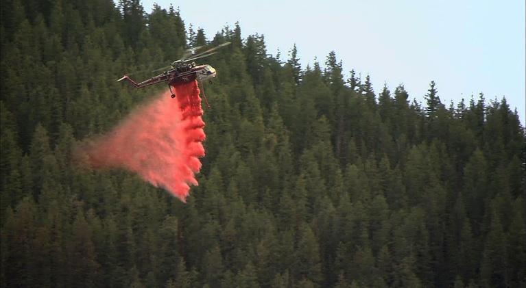 Science Trek: Wildfire:  Wildfire Basics