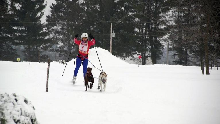 Wisconsin Life: Skijoring