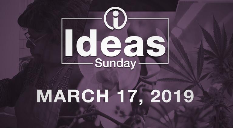 Ideas: Sunday - March 17, 2019
