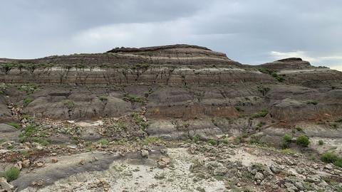 How the Soil Tells the Story of the Dinosaur Extinction