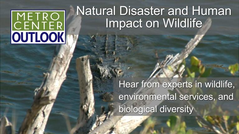 Metro Center Outlook: Natural and Human Impacts on Wildlife