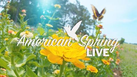 Nature -- American Spring LIVE Trailer