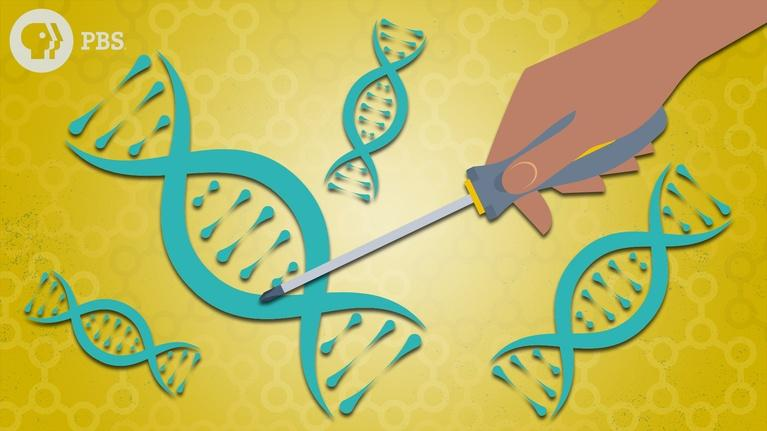 Above The Noise: Gene Editing & CRISPR: How Far Should We Go?