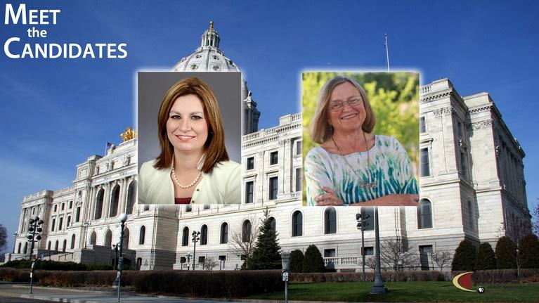 Meet The Candidates: K-12 Issues