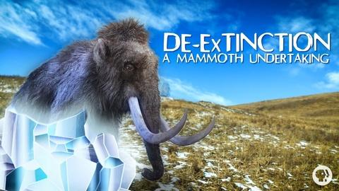 It's Okay to Be Smart -- S4 Ep34: De-Extinction: A Mammoth Undertaking