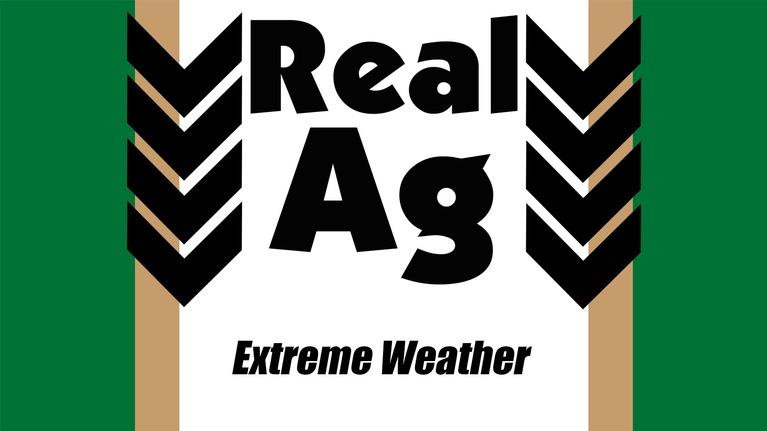Real Ag: Real Ag Extreme Weather Ep 710