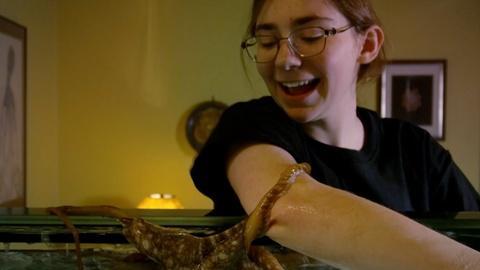 Can a teenager befriend an octopus?