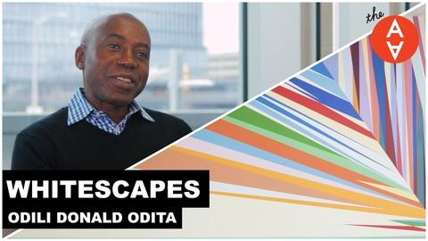 The Art Assignment -- S3 Ep29: Whitescapes - Odili Donald Odita | The Art Assignme