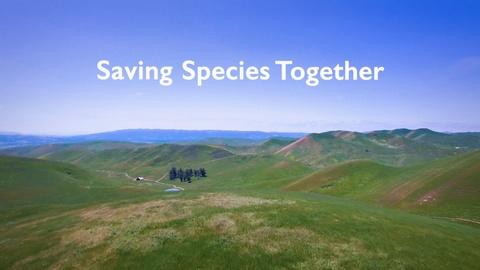 ViewFinder -- Saving Species Together
