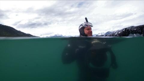 Wild Alaska Live -- Alaska's Most Surprising Predator: The Salmon Shark