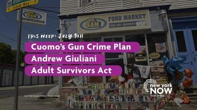 Cuomo's Gun Crime Plan, Andrew Giuliani, Adult Survivors Act