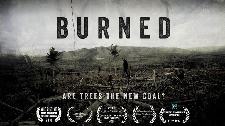 Made Here: PREVIEW: BURNED: Are Trees the New Coal?