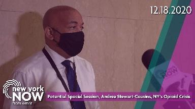 Special Session, Senator Stewart-Cousins, Opioid Crisis