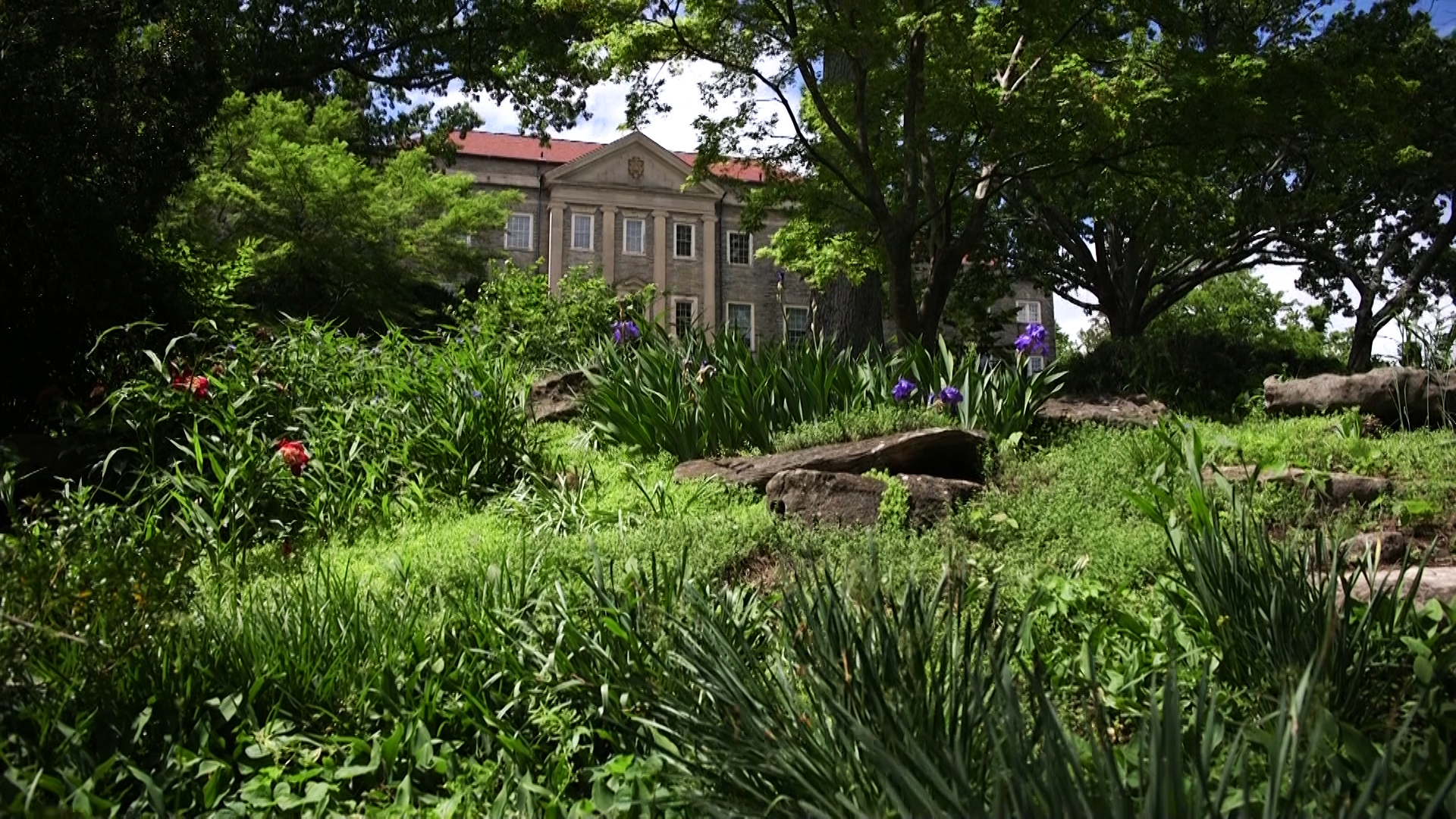 Cheekwood: A Masterpiece by Man & Nature | NPT