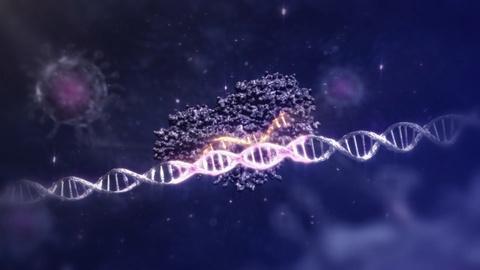 NOVA -- How does CRISPR work?