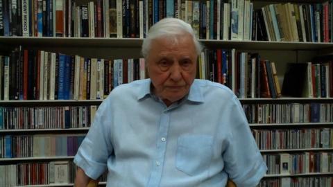 Sir David Attenborough Reflects on Earth Day