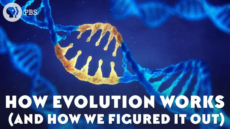 Eons: How Evolution Works (And How We Figured It Out)