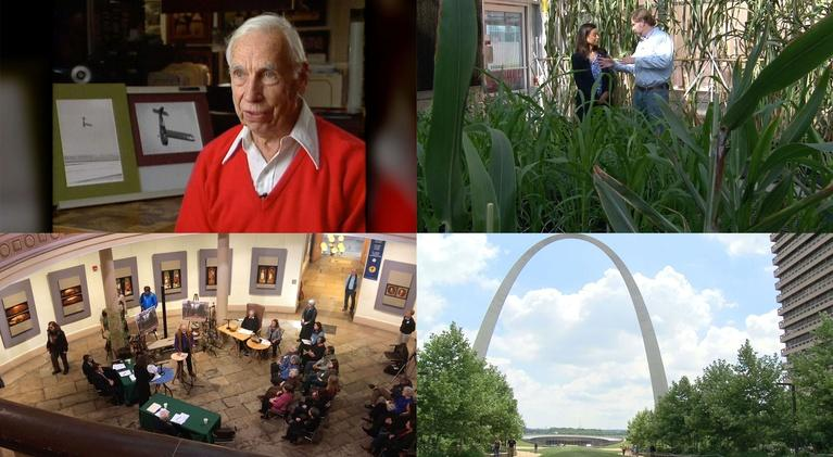 Living St. Louis: July 30, 2018