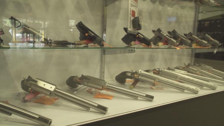 PBS39 News Reports: WOLF ON GUNS