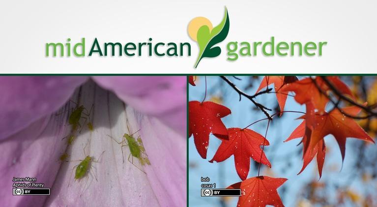 Mid-American Gardener: Mid-American Gardener with Mike Brunk, April 19, 2018