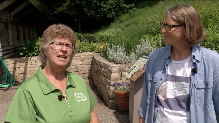Prairie Yard & Garden: Nature Based Therapeutics with Jean Larson