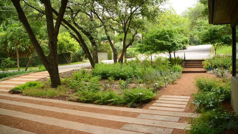 Central Texas Gardener: Rethinking Landscapes in Weather Challenges