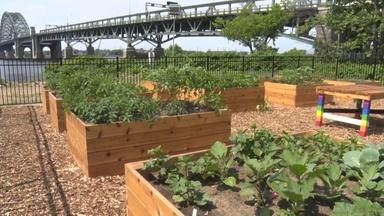 Public community garden opens in Burlington County