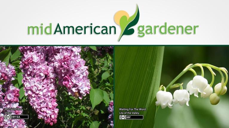Mid-American Gardener: Mid-American Gardener with Jennifer Nelson, May 10, 2018