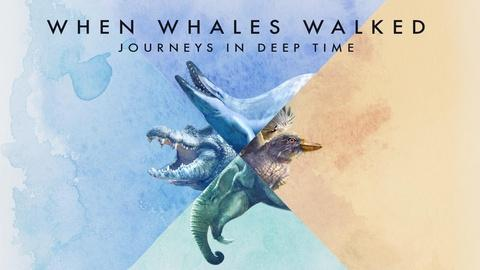 When Whales Walked: Journeys in Deep Time Intro