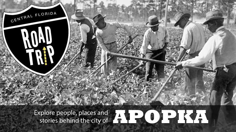 Central Florida Roadtrip: Apopka