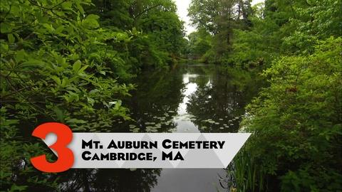 10 That Changed America -- Parks | Mount Auburn Cemetery, Boston, MA