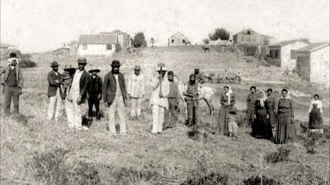 Ashkenazi Jews Arrive in Palestine
