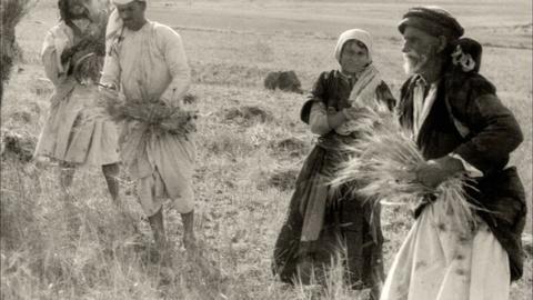 1913: Seeds of Conflict -- A Return to the Land
