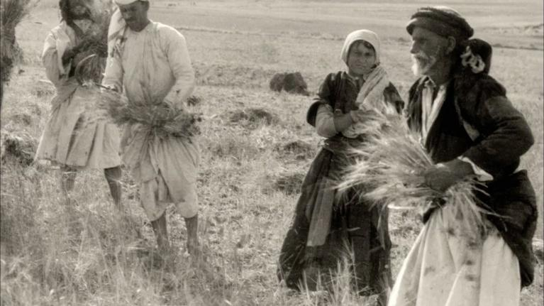 1913: Seeds of Conflict: A Return to the Land