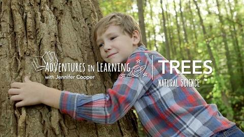 Adventures in Learning -- Learning About Trees
