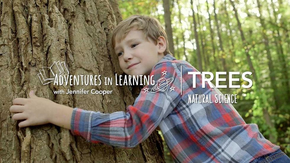 Learning About Trees image