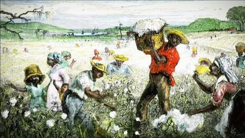 The African Americans: Many Rivers to Cross -- The Cotton Economy and Slavery