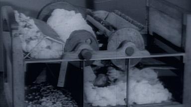 Classroom | The Cotton Gin
